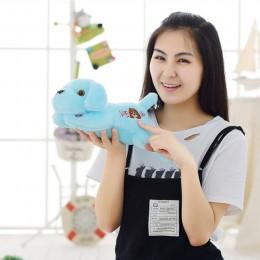 50/35cm gorąca sprzedaż kolorowe świecące teddy pies światła LED pluszowa poduszka poduszka dla dzieci zabawki wypchane zwierzę