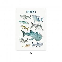 Dziecko plakat dinozaury wieloryb rekin Marine Animal przedszkole płótno drukowany obraz edukacja ściana obraz malarstwo Baby Ki