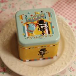 Wykwintne 3D Cartoon blaszane pudełko herbatniki/liść herbaty rozmaitości pojemnik Case Metal konfigurowalny hurtownia dziecko p